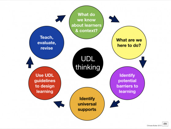 11412 [UDL-thinking-cycle.jpeg]