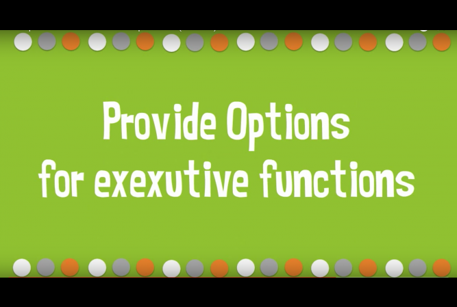 UDL options for executive functions.