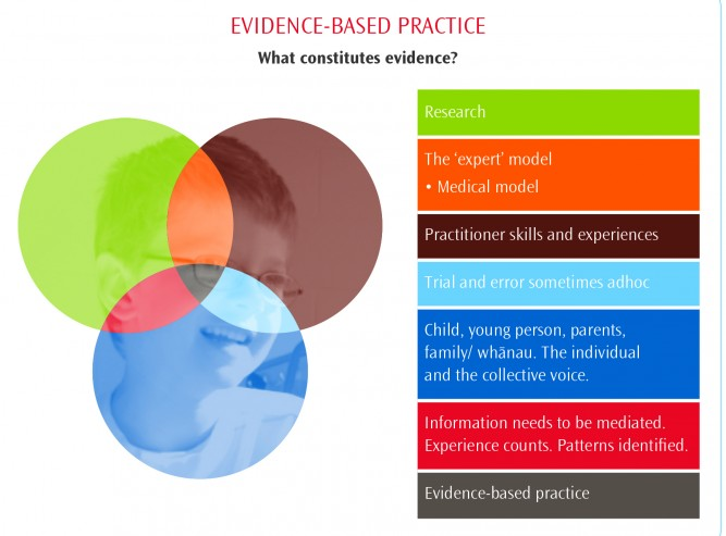 A graphic of RTLB evidence-based practice framework for evaluating data.