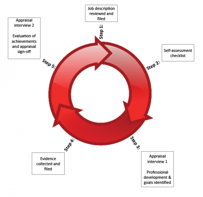 Diagram of an appraisal cycle